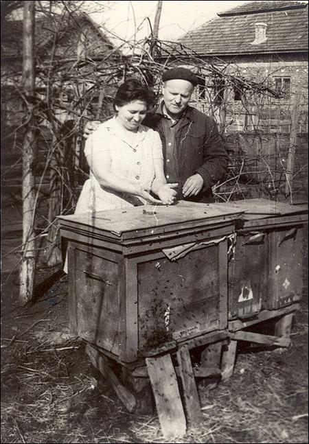 Emil si Ana Marcu la stupi in gradina din strada Closca nr. 19