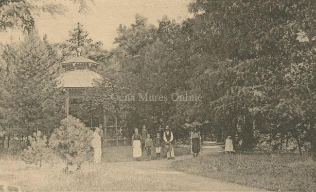 Parcul şi pavilionul cu muzică în 1910.